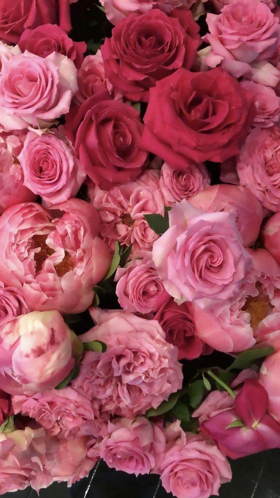 Приворот роза сладострастия